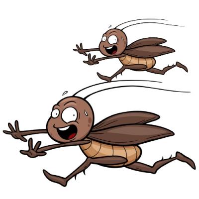 Аттракцион Тараканьи бега